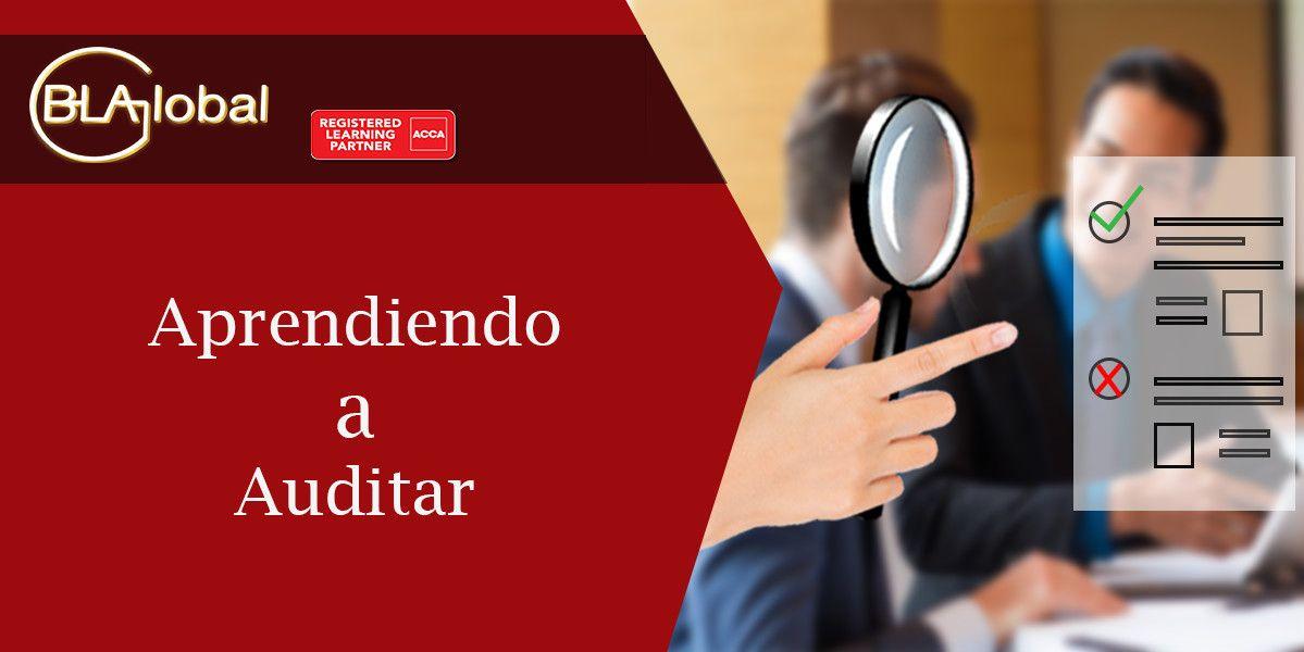 Aprendiendo a Auditar