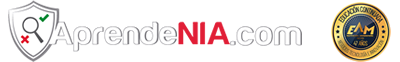 Dificultades en la Aplicación de Estándares de Auditoria | AprendeNIA.com